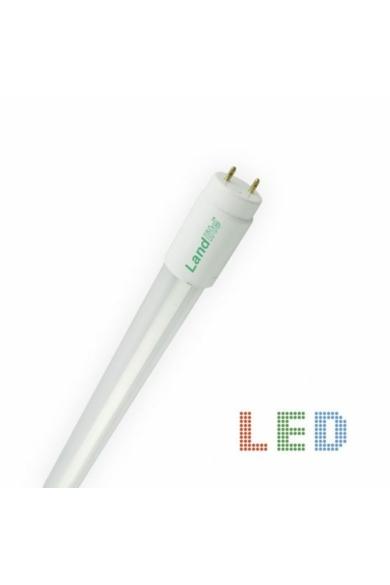 LANDLITE LED, T8, 600MM, 9W, 900LM, 4000K FÉNYCSŐ ÜVEGBÚRÁVAL